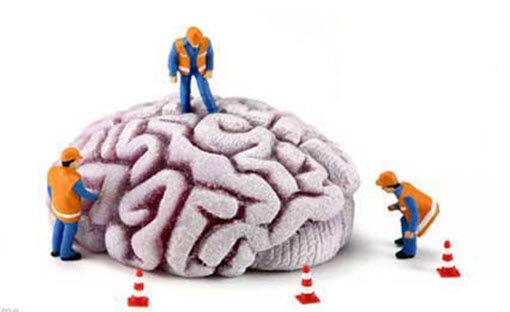 瑞典研究发现:减肥或助提高记忆力