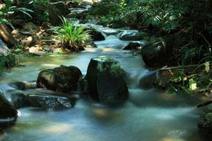 三水南丹山 美景深处的神秘