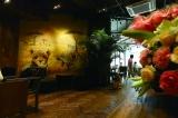 动物园咖啡馆是长在现实里的美味童话