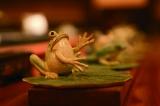 手造茶盘和台湾大师的幽壶,浇出台式茶生活味