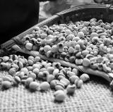 多用玉米须赤小豆煲汤,健脾又祛湿