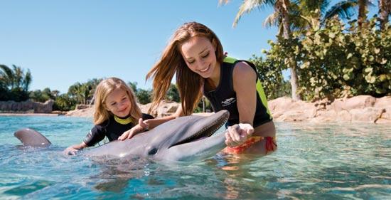 与海洋动物亲密接触 探访全球六大水族馆