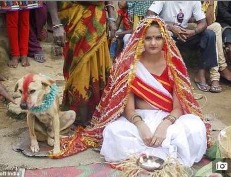 印度少女被疑带来厄运 被逼嫁给流浪狗转运