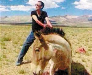 虐杀野驴案宣判 细节曝光