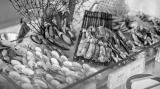 葵花鸡宴,一鸡顶十鸡