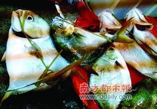研究发现:吃鱼使大脑免于汞毒伤害