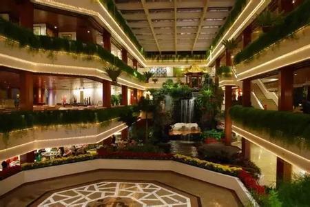 广州:为吃虾饺茶点 白天鹅宾馆粉丝凌晨3点排队