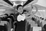 揭秘三万英尺的爱情:与空姐空少谈恋爱是种什么体验