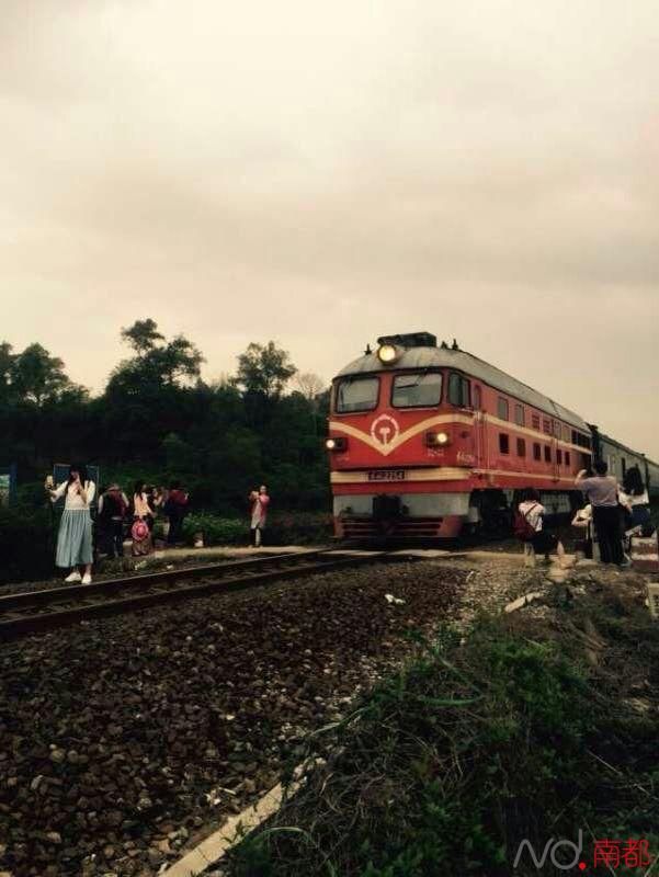 佛山女大学生玫瑰花海自拍被火车撞亡