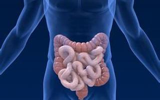 名医坐诊:别把大肠癌当痔疮了