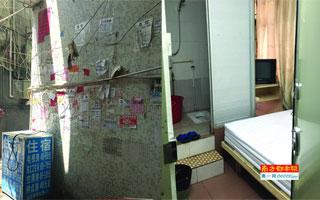 """白石洲居民楼中开设廉价旅馆 房间被间隔成多个""""胶囊房"""""""