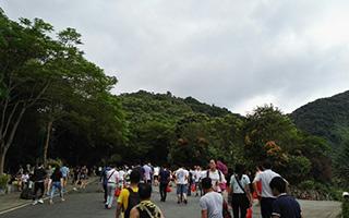 国庆长假第二天   至少7万深圳人挤在梧桐山