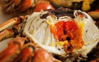 心心念念的大闸蟹 蟹黄会致癌?