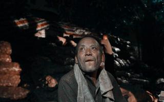 深圳市民半夜买空32吨土豆  只为这位青海老人回家