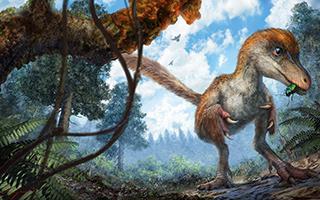 封存了9900 万年,这只萌萌哒恐龙,被一位80后潮州仔解除了封印