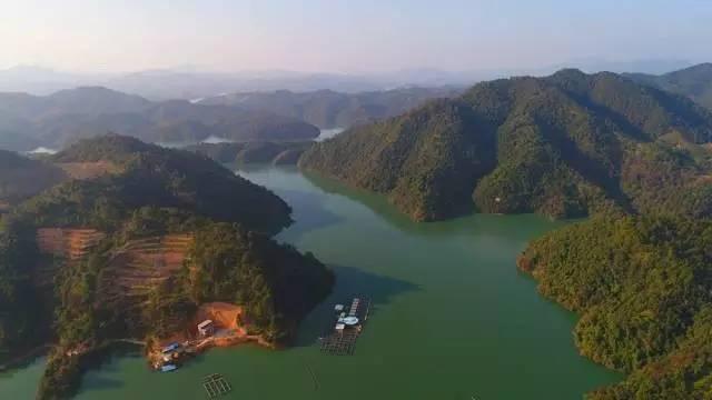 """只是为了在这条有着""""港深水塔""""之称的东江源——广东龙川枫树坝水库"""