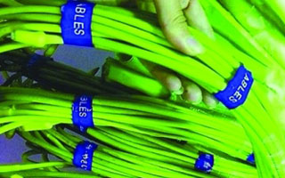 超市里用胶带捆绑的蔬菜 接触胶带处甲醛超标10倍