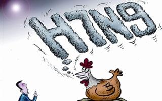 深圳报告今年第三例人感染H7N9流感病例