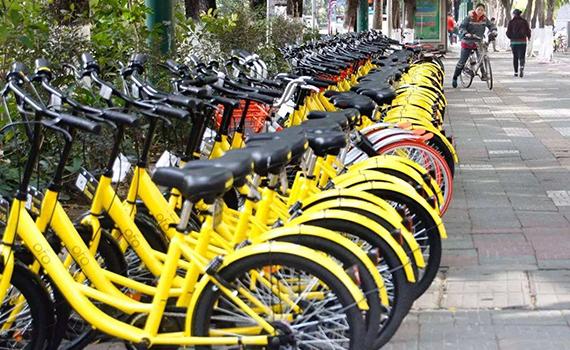 共享单车漏洞背后藏产业链:密码、学生账户都可交易