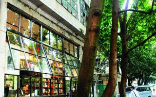 书店复兴:佛山两家实体书店转型升级用全新形象示人