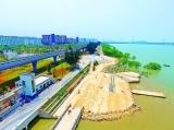"""西湾红树林公园二期开园美景与科技""""齐飞""""打造黄金海岸"""