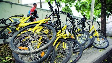 几乎每2个人就有1个在使用共享单车