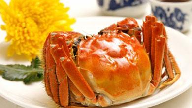 大闸蟹是避孕药催肥养大的?