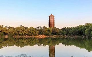 北大清华自主招生初审名单公示,广东101人入选,华附成大赢家
