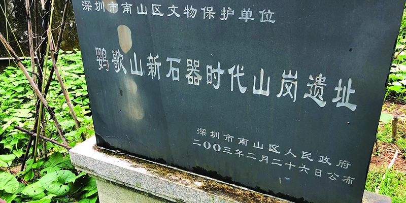 深圳一新石器时代遗址成私家菜地 3年来为何没人管