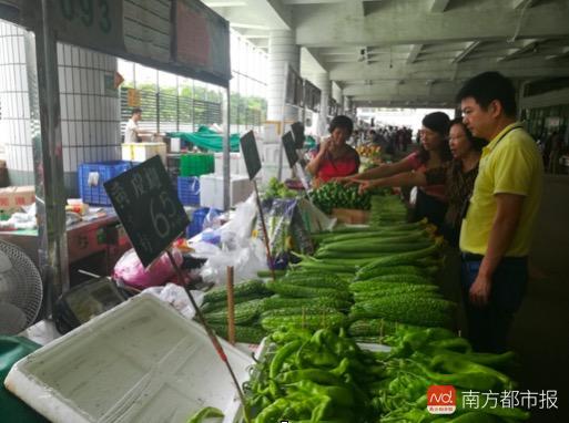 台风后深圳蔬菜涨价20%?现菜价肉价恢复正常