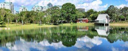 秋游不必远方,深圳这10个公园免费任你玩