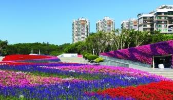 深圳公园景观改造,6大市属公园颜值惊艳