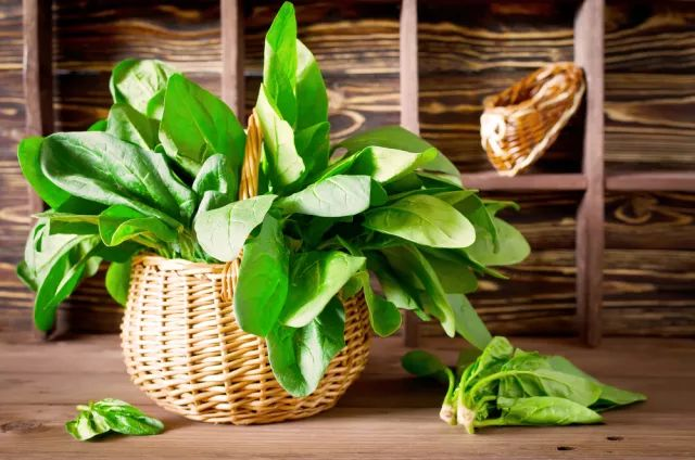 春天5种蔬菜最新鲜,4种食物最养肝