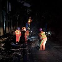 深圳梅林街道7小时连续奋战,清理枯枝30余车消除山火隐患