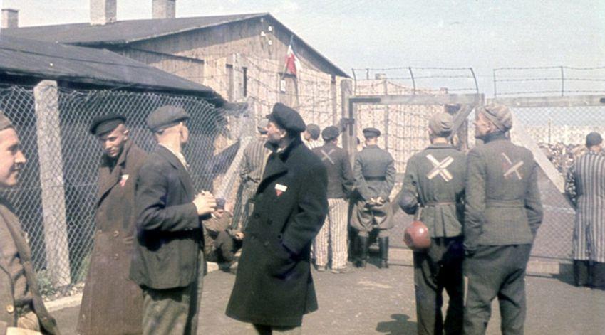 纳粹女孩的春天图片